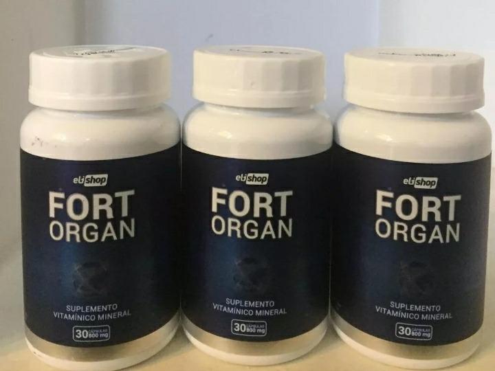 Fort Organ